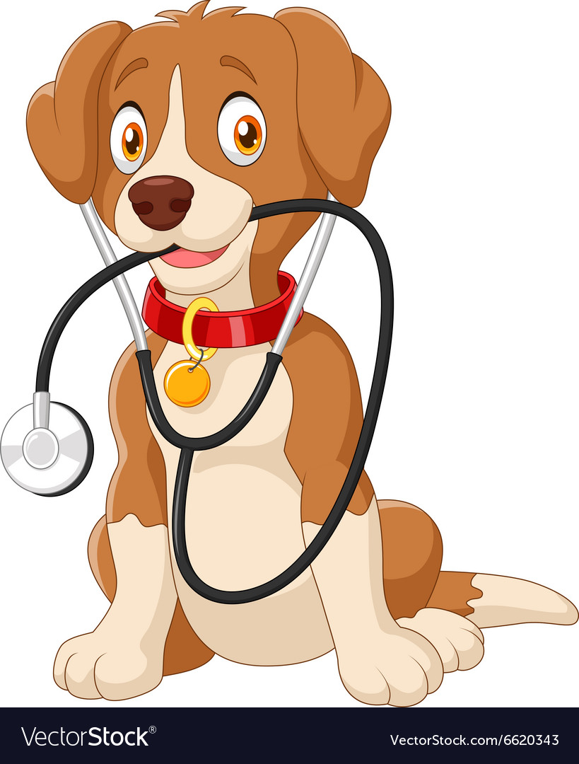 Cute dog sitting with stethoscope vector