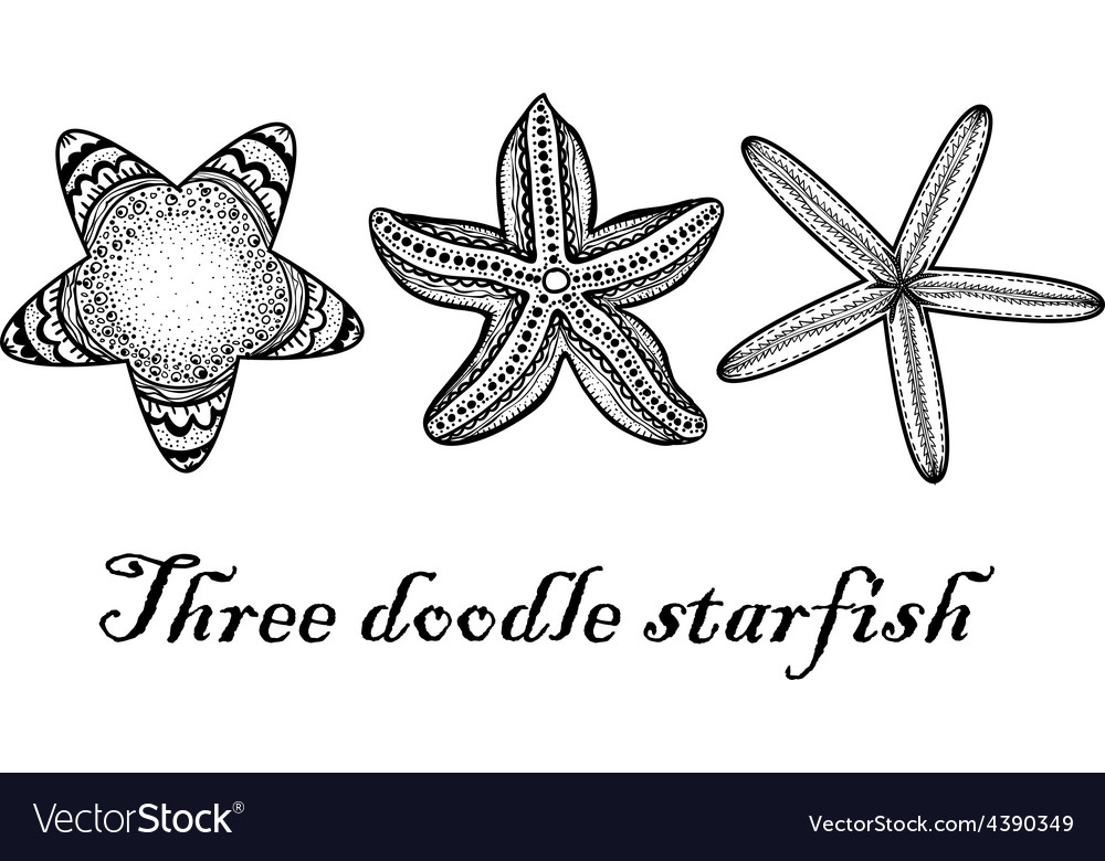 Three doodle textured starfish vector