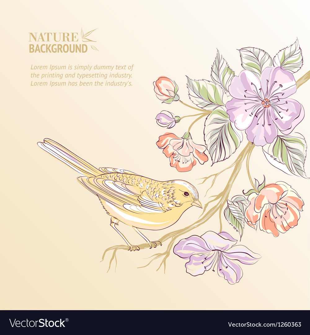 Cute watercolor bird vector
