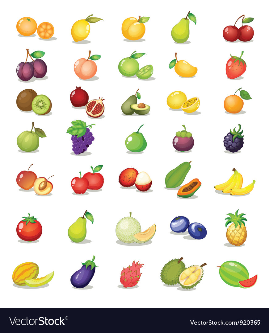 Mixed fruit vector