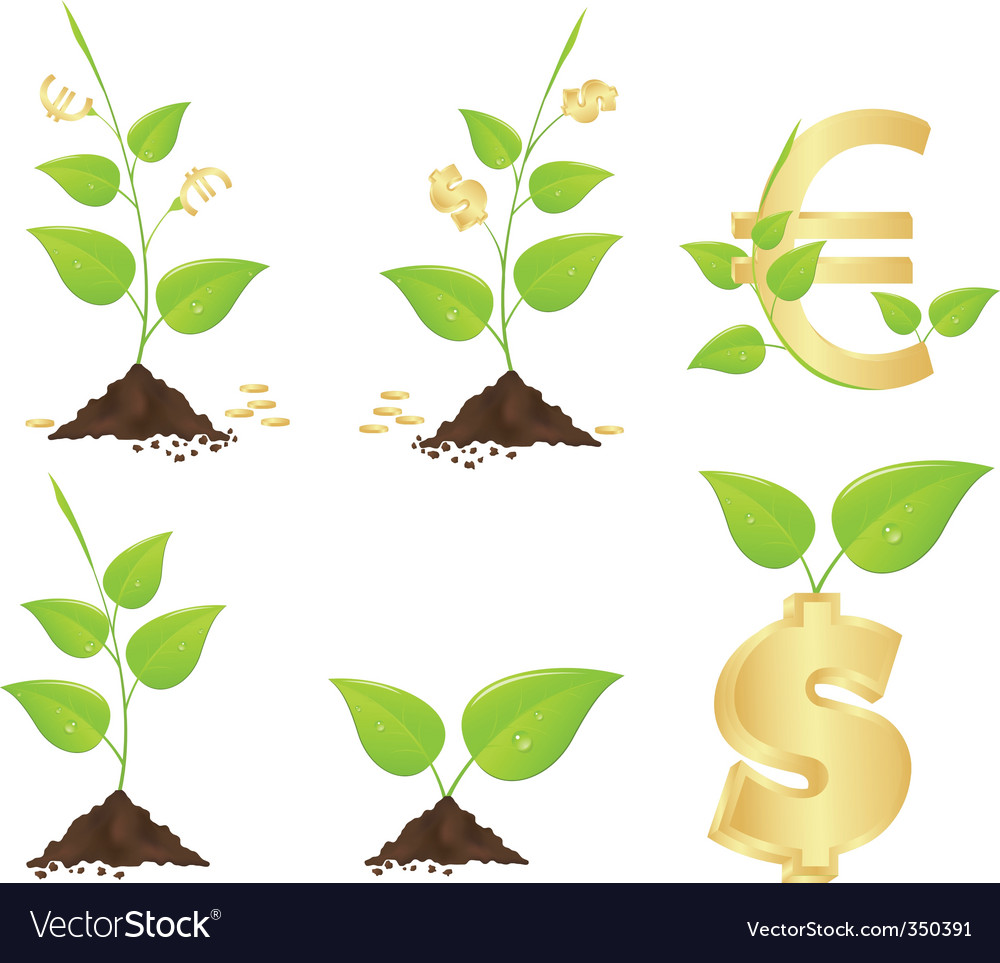 Money trees vector