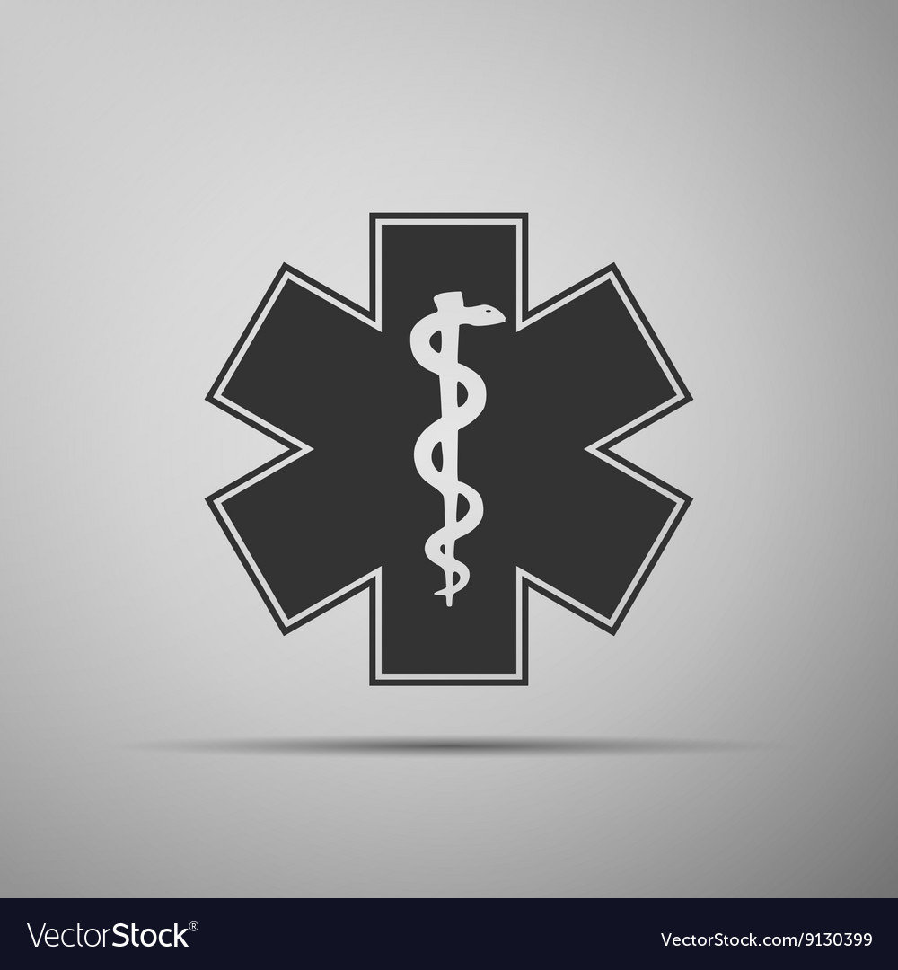 Medical symbol of the emergencystar of life icon vector