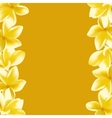 Background with realistic Frangipani flower vector image