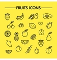 Fruits and berries line icons vector image