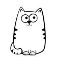 Joyful tabby cat vector image