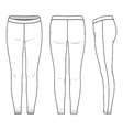 Leggings vector image