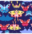 Pattern multicolored butterflies vector image