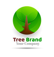 Tree Logo abstract design template Eco Green vector image