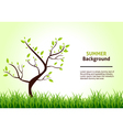 Summer Landscape Tree on a Background of Green vector image vector image