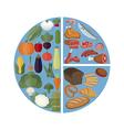 Healthy food concept vector image