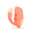 funny red cat standing up and looking up cute vector image