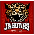 Sport team - Jaguar wild cat Panther vector image