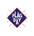 Flag day Independence vector image