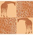 Giraffe patterns for wallpaper vector image
