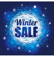 Winter Abstract Background with Snowflakes vector image vector image