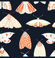 summer moth seamless pattern vector image