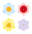 tender daffodils of several colors beautiful open vector image