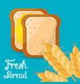 fresh bread slice wheat ingient vector image