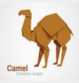 camel logo origami vector image