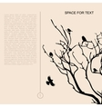 birds on dry branches vector image