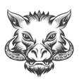 Boar head vector image