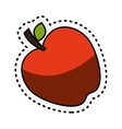 fresh fruit with cut line isolated icon vector image