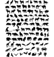 100 animals vector image