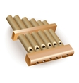 Classical bamboo Pan flute vector image vector image