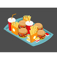 Fast food big set Many meal on tray Frying vector image
