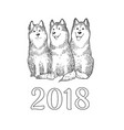 congratulation card with three funny husky dogs vector image
