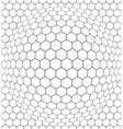 Convex net vector image vector image