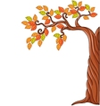 Autumn tree isolated on white background vector image vector image