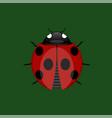 summer ladybug icon vector image