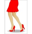 Red Skirt vector image