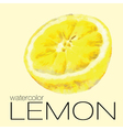 Hand drawn watercolor painting of half a lemon vector image