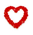 heart shape made of rose petals vector image
