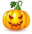 Cartoon Halloween pumpkin isolated vector image