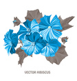 decorative hibiscus flowers vector image