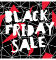 Big Sale Black Friday Sale Poster vector image