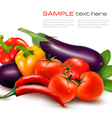 Fresh vegetable with leaves Healthy Eating vector image