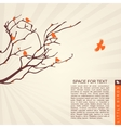 little birds on the branches vector image