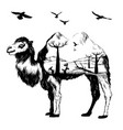 double exposure hand drawn camel vector image