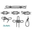 sea rope knots in different directions for water vector image