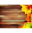 Autumn leaves over old wooden plus EPS10 vector image vector image