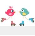 birds on roller skates vector image