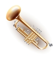 Classical brass trumpet isolated on white vector image