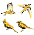 Set of four triangle birds symbols vector image