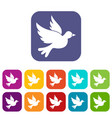 dove icons set vector image