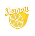 Tasty Lemon vector image