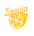 Tasty Lemon vector image